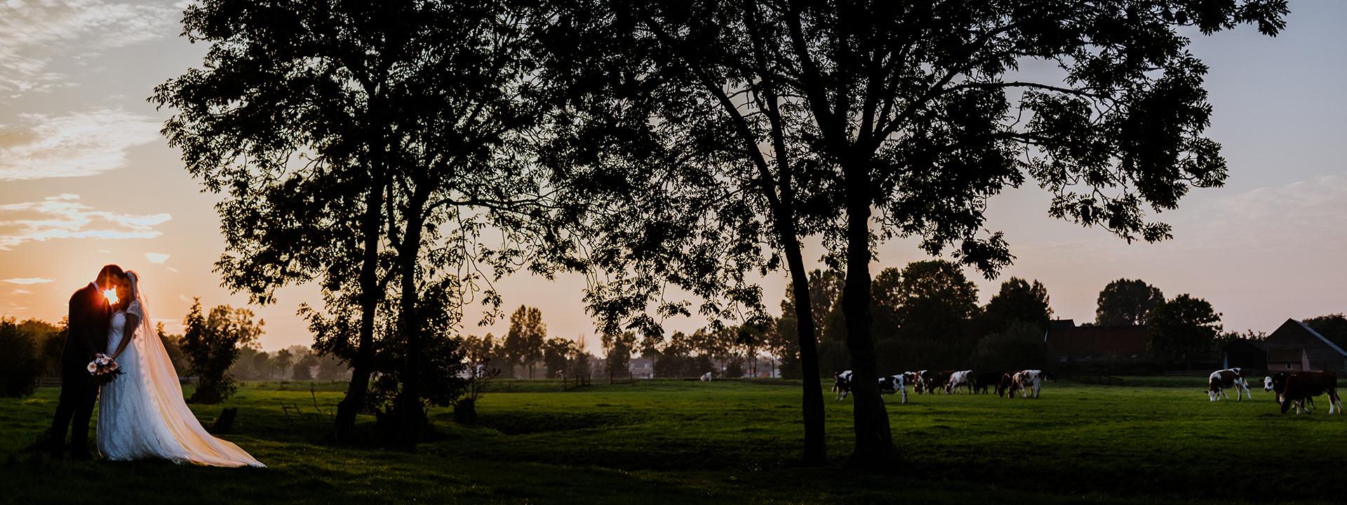 trouwfotograaf-rotterdam-banner-61